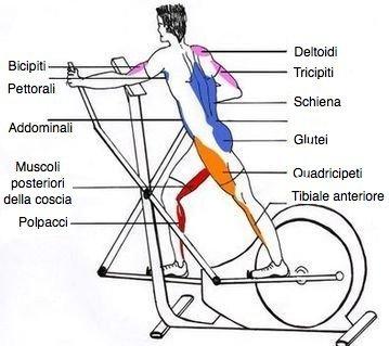 esercizi per perdere peso con la bici ellittica